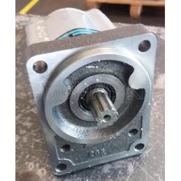 Gear pump A31.5L32800