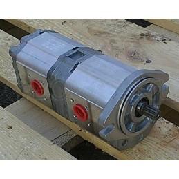 Double gear pump group 2