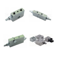 Safety valves, direct mount for orbital motors